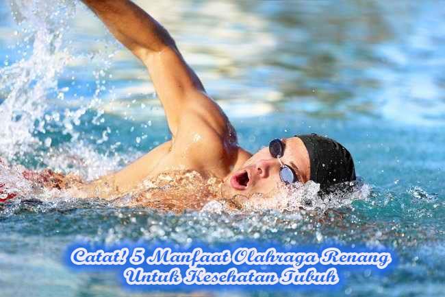 Catat! 5 Manfaat Olahraga Renang Untuk Kesehatan Tubuh
